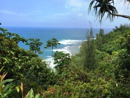 web Kauai 2017 099