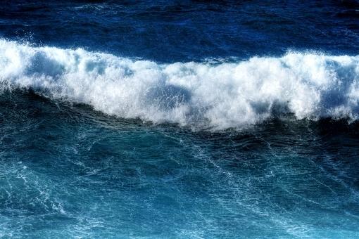 tsunami687637.jpg