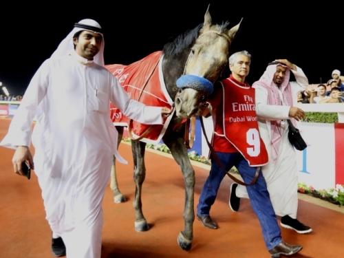 【競馬】サウジアラビアが賞金総額1700万ドルの競馬レース開催へ 日本からの参加も期待