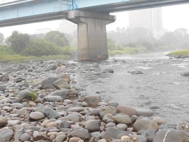 20180904中央大橋橋脚DSCN4991.jpg