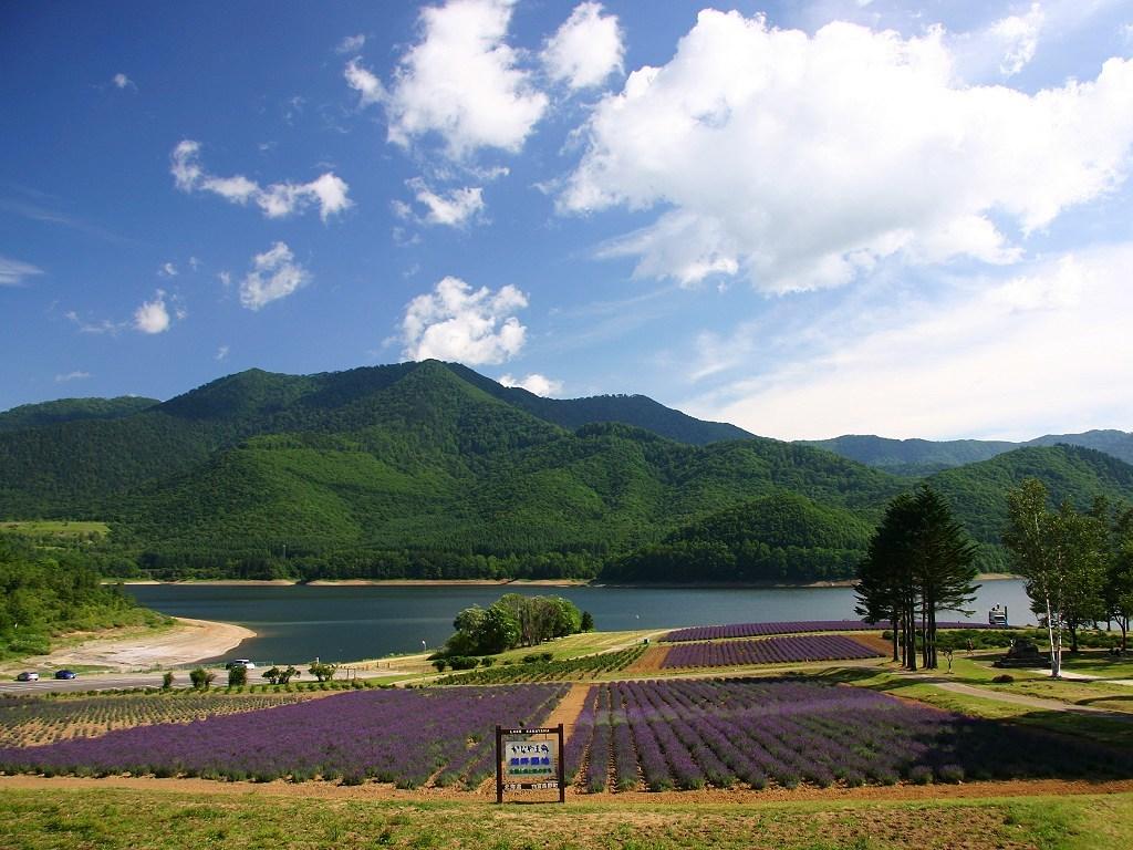 金山ダム/かなやま湖 - 美瑛/富良野の絶景