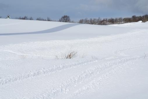 snow63876.jpg