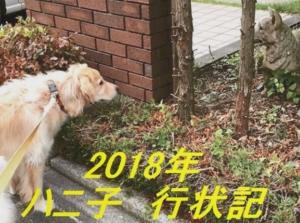20190108ハニ子行状記タイトル