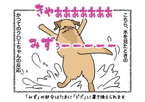 04022019_dog1.jpg
