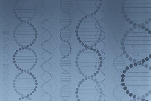 DNA78787.jpg