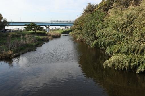 river587658.jpg