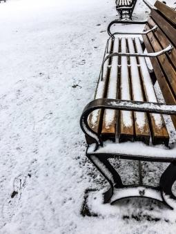 snow68768.jpg