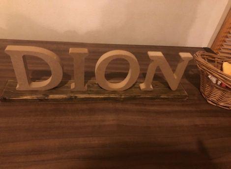 dion4.jpg