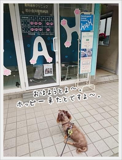 fc2_2019-04-25_01.jpg