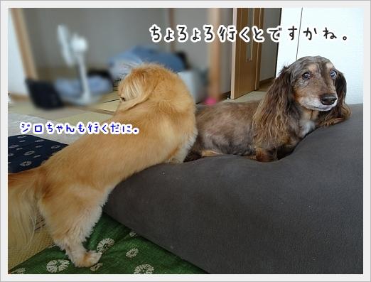 fc2_2019-07-18_01.jpg