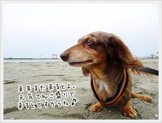 fc2_2019-07-18_12.jpg