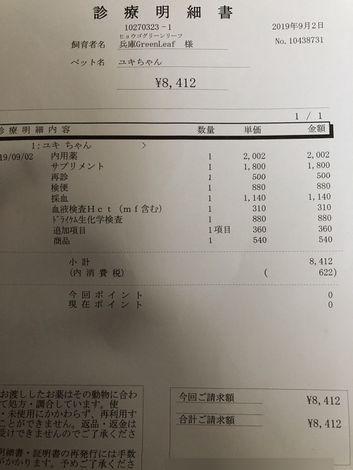 kakoyuki17.jpg