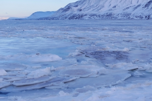 ice4786.jpg