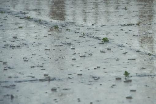 rain68575.jpg