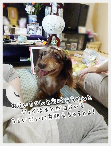 fc2_2019-08-27_01.jpg