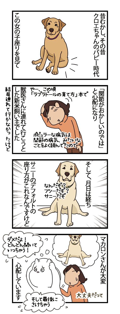 01122020_dogcomic.jpg