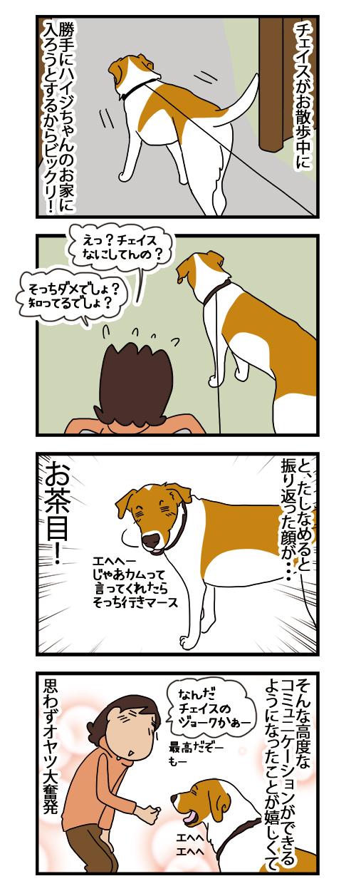 05122020_dogcomic.jpg