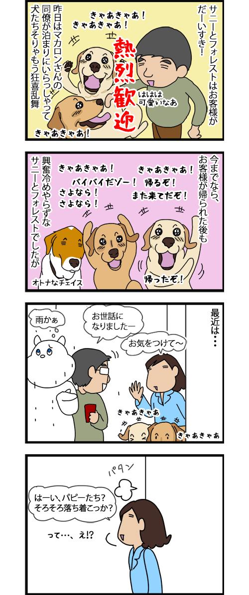 06072020_dogcomic1.jpg