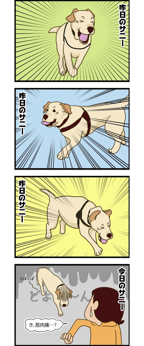 08062020_dogcomic.jpg