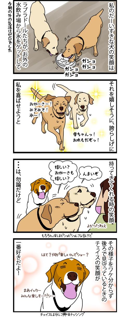 13082020_dogcomic.jpg