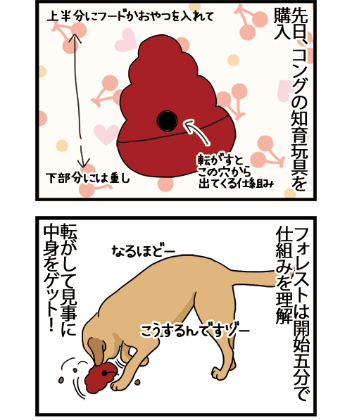 18112020_dogcomic_1A.jpg