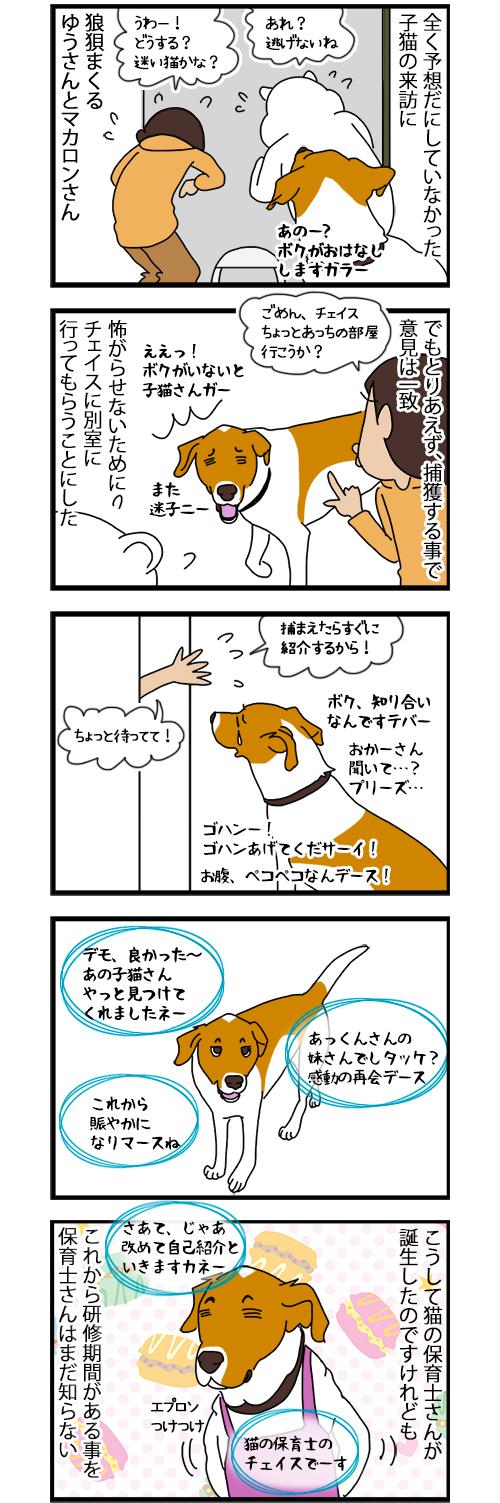 26082020_dogcomic.jpg