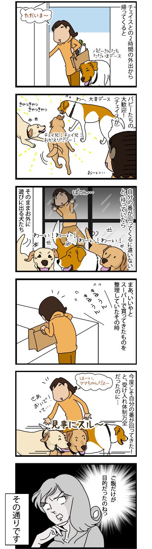 30052020_dogcomic.jpg