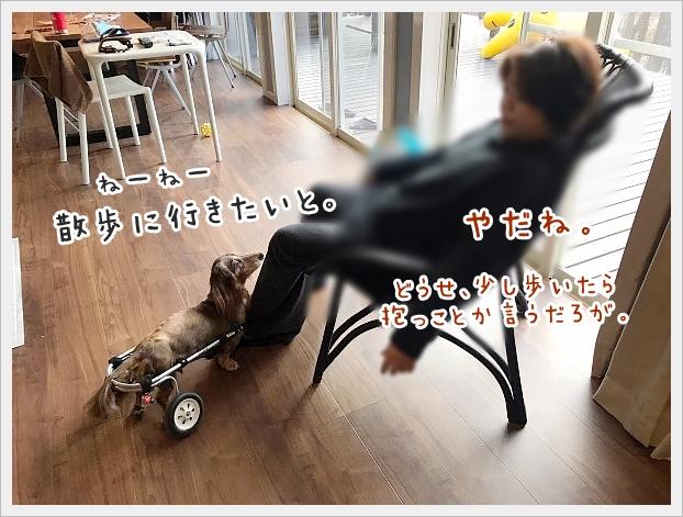 fc2_2020-11-27_02.jpg