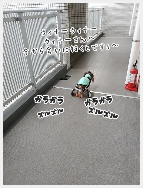 fc2_2021-01-13_04.jpg