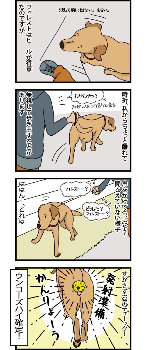 08062021_dogcomic_1.jpg