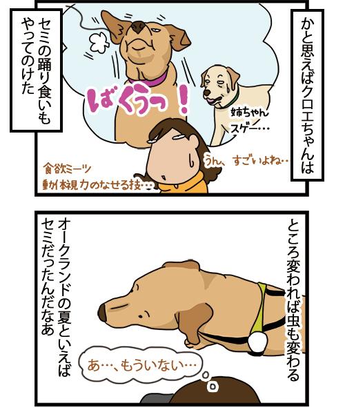 12042021_dogcomic_mini2.jpg