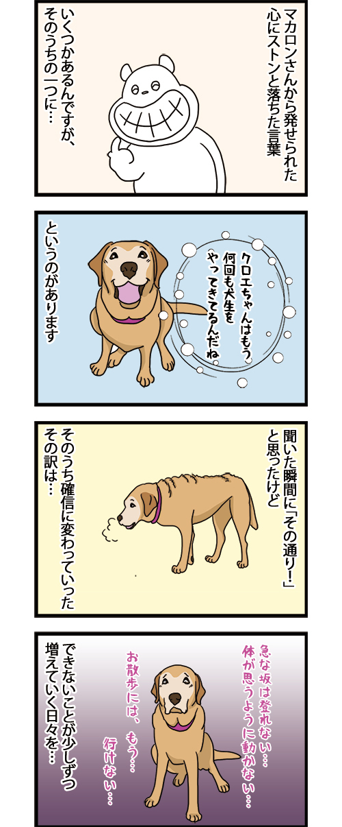 16042021_dogcomic1.jpg