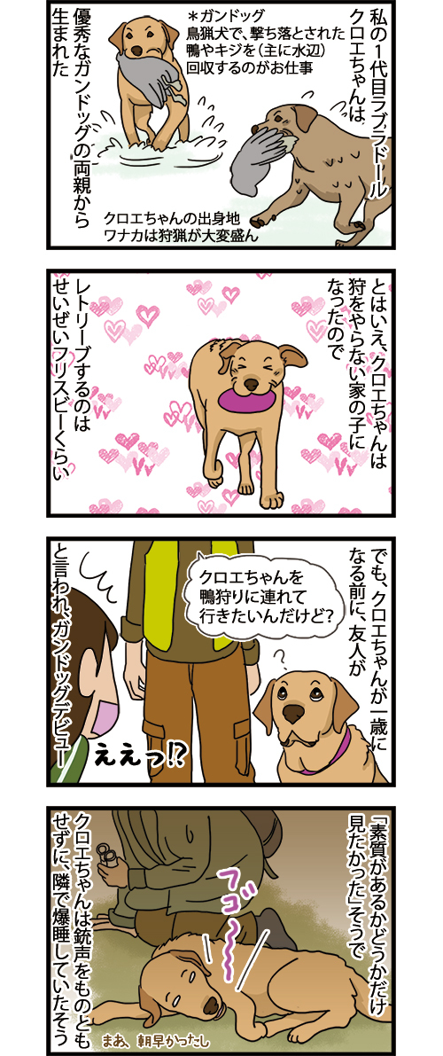 18052021_dogcomic_1.jpg
