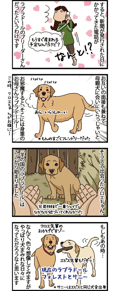 24052021_dogcomic_2.jpg