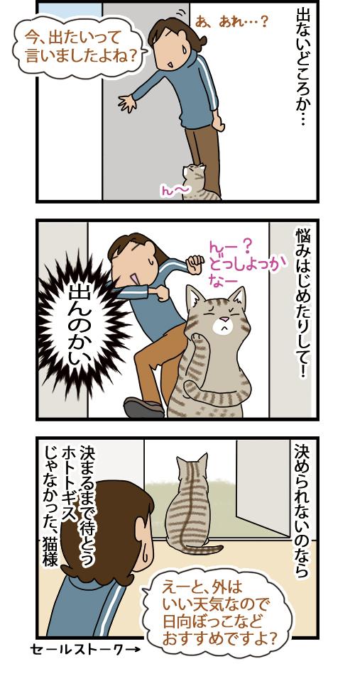 DogsandCats_mini2.jpg