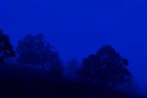 dark_dream6587.jpg
