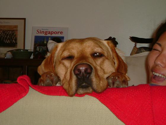 02072021_dogpic6.jpg
