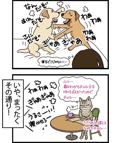 02092021_dogcomic_2.jpg