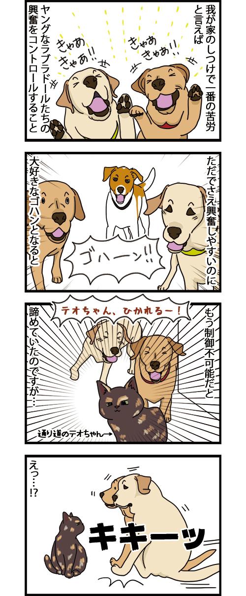 15072021_dogcomic_1.jpg