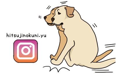 15102021_instagramLogo.jpg