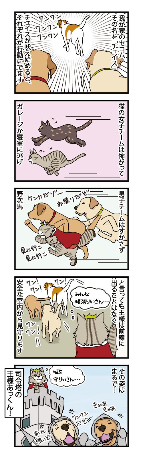 20072021_dogcomic.jpg