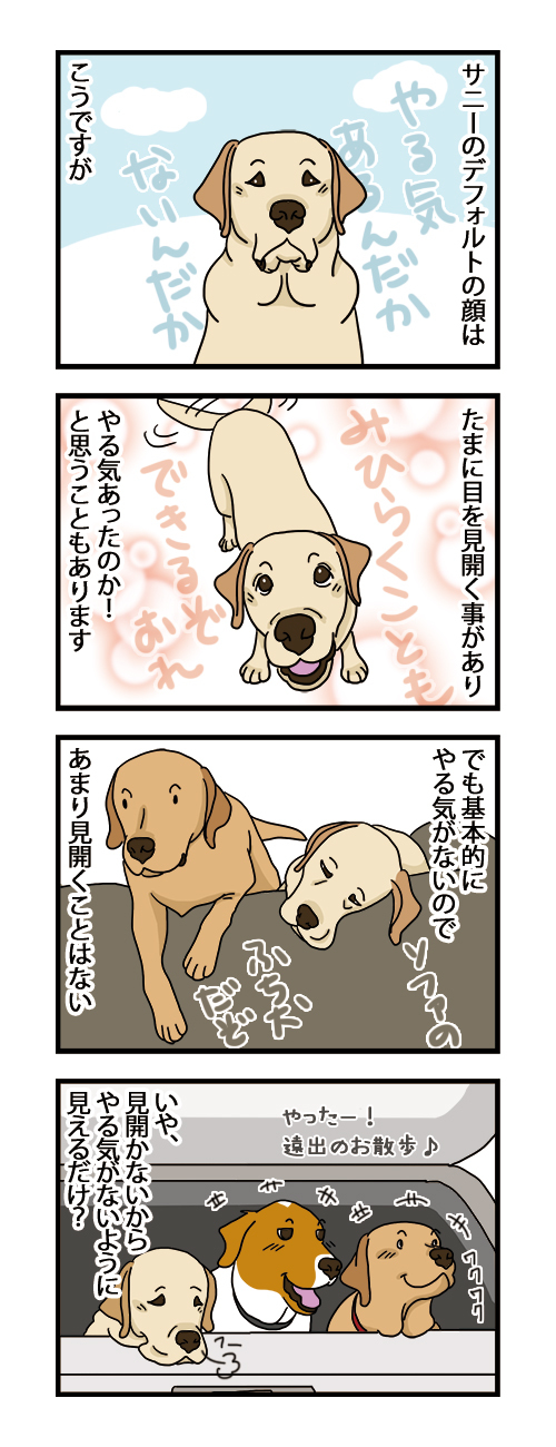 24082021_dogcomic.jpg