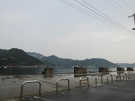 三崎港 5