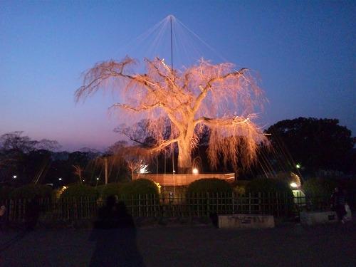 円山公園 2