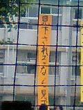 c46f036c.jpg