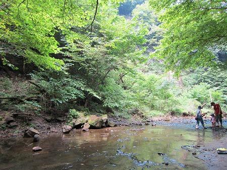 小糸川 3