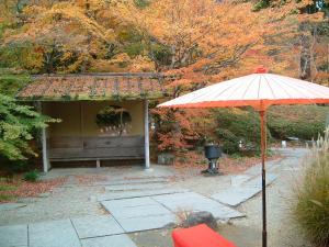 matushima+058_convert_20110309123533.jpg