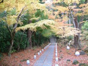 matushima+059_convert_20110309123556.jpg