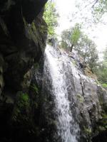 Hedge Creek 060210-50001