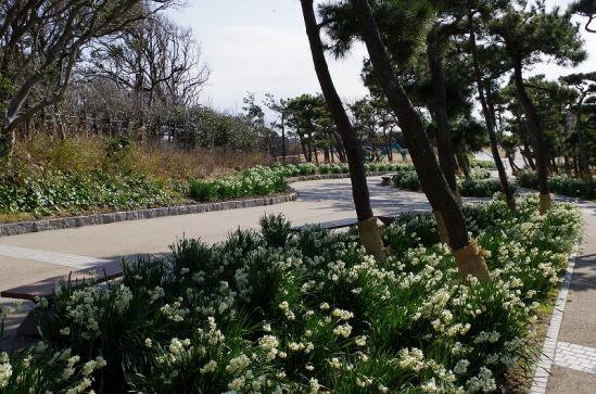 城ヶ島 3